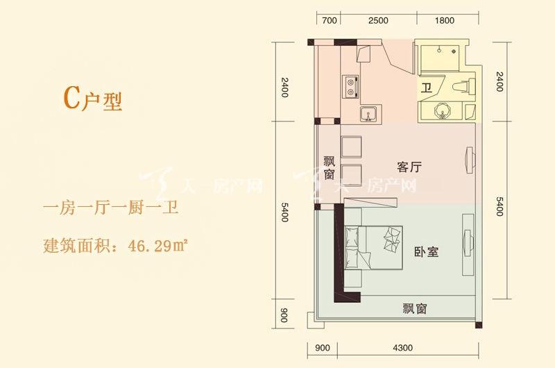 天成国际 C户型 1房1厅1厨1卫 46.29㎡.jpg
