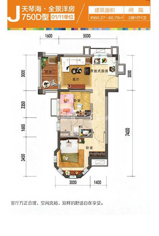 碧桂园珊瑚宫殿天琴海J750D-2房1厅1厨1卫-60.27㎡.jpg