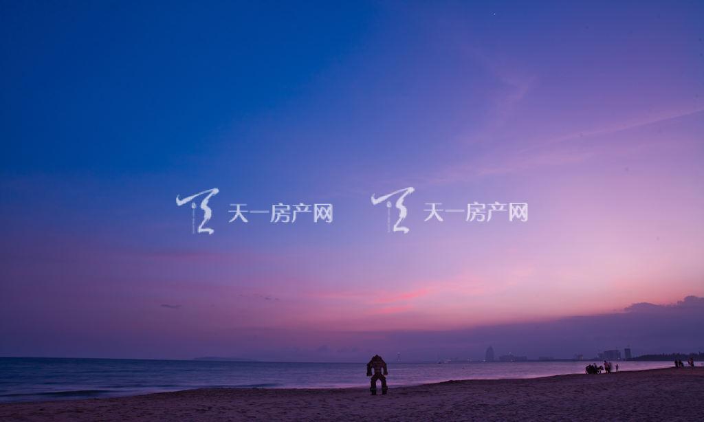 清鳳海棠長灘實景圖 (1).jpg