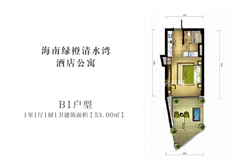 海南绿城清水湾酒店公寓B1户型1室1厅1厨1卫建筑面积53㎡