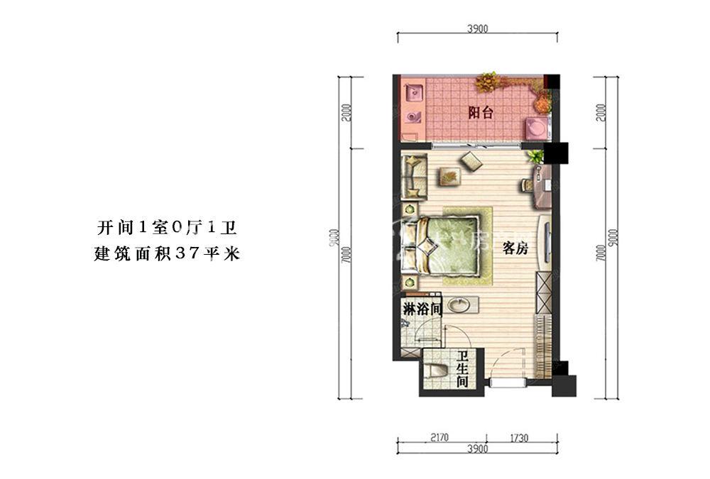 开间1室0厅1卫建筑面积37平米