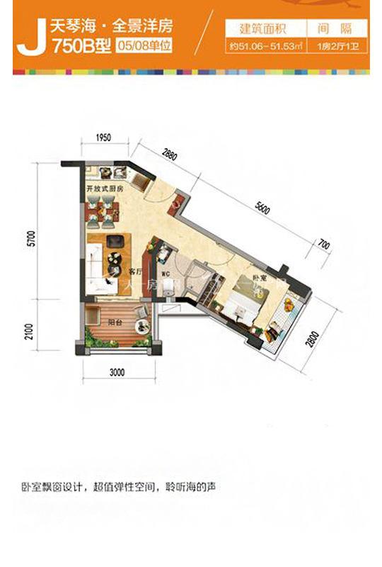 天琴海J750B-1房2厅1厨1卫-51.06㎡.jpg