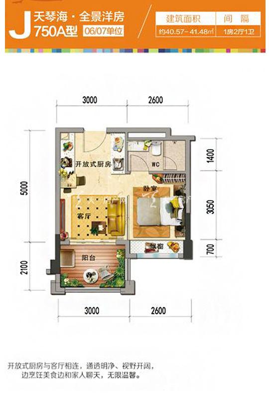 天琴海J750A-1房2厅1厨1卫-40.57㎡.jpg